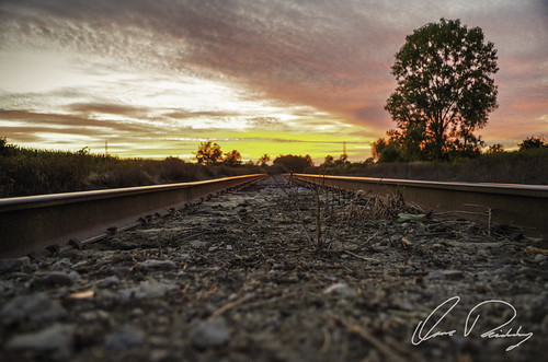 Norfolk Southern Sunset