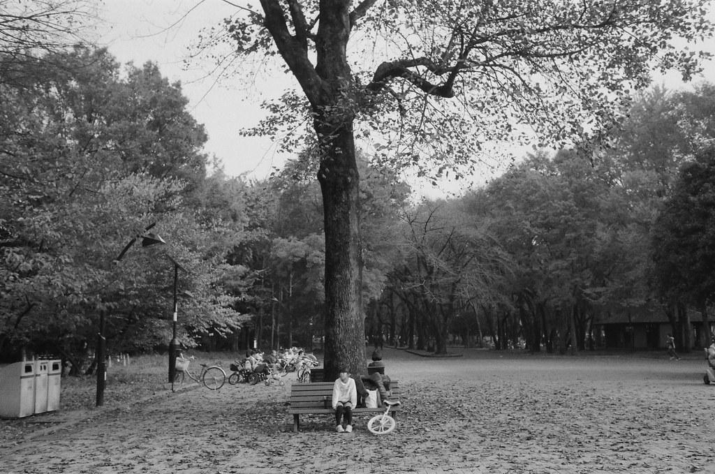 光が丘 Tokyo, Japan / Ultrafine Extreme / Nikon FM2 小女孩孤孤單單的在大樹下等人,好像弟弟跑去尿尿,爸爸不知道要去哪裡,就叫妹妹在樹下等。  滿地的落葉、出遊的物品還有不知道為什麼一直拍她的怪路人。  Nikon FM2 Nikon AI AF Nikkor 35mm F/2D Ultrafine Extreme 400 9084-0017 2016/11/20 Photo by Toomore
