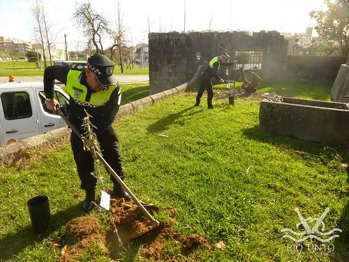 2017_03_21 - Plantação de Árvores pela PM GDM (7)
