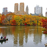 Fall in Central Park, NYC