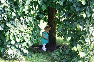 Emily playing hide and seek in Bute Park Cardiff