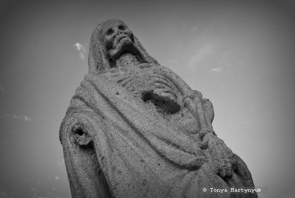 9 - Епископский сад - Каштелу Бранку - Португалия