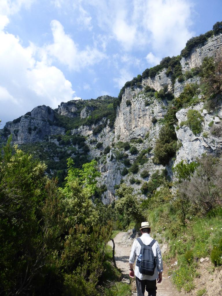 Cliffs full of eagle nests