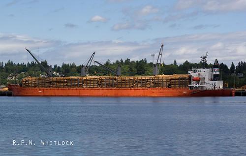 Global Peace Bulk Carrier