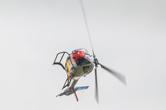 Spanish air force 1ASPA  - EC120 Colibri