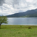 Rara National Park image