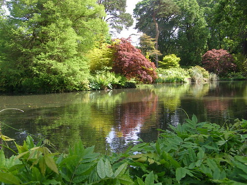 Tranquil Pond© Nigel Philpott