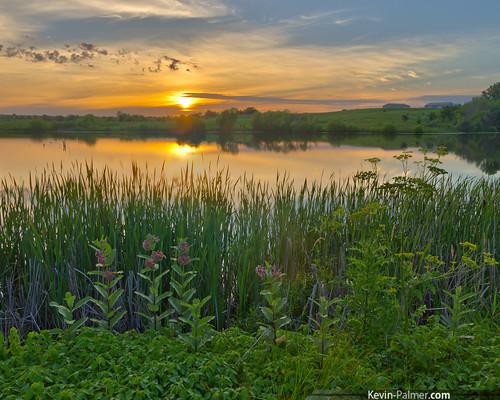 sunset summer sky orange reflection water june yellow reeds gold mirror golden evening pond colorful dusk iowa cattails wildflowers milkweed hdr kevinpalmer keosauqua tamron1750mmf28 lakesugema pentaxk5