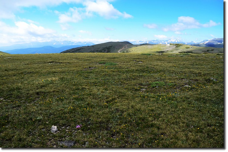 Looking at Mount Evans to Torreys Peak crest line from the Tundra