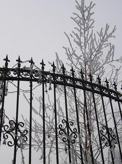 snowy winter in bulgaria fence