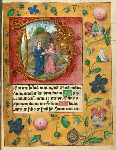 002-Libro de horas de Aussem-Art Walters Museum Ms. W.437