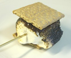 S'Mores (Jenni's Bridal Shower Favor) (14)