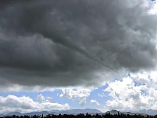 Waddington's Funnel/Tornado
