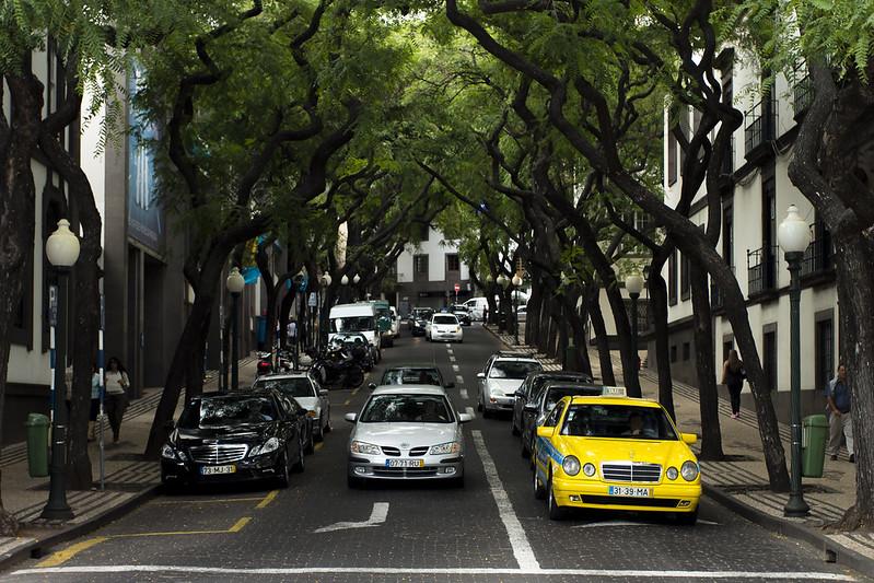 Avenida Zarco - Funchal, Madeira