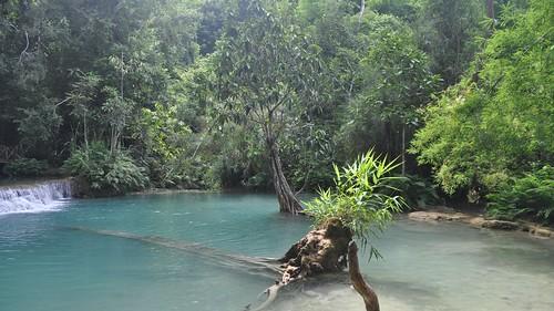 park blue water waterfall nikon turquoise laos province touristattraction luangprabang 2014 kuangsi d5000