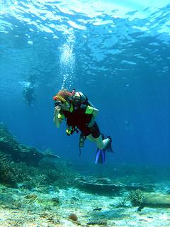 "<img src=""refresh-dive-tioman-island-malaysia.jpg"" alt=""Refresh Dive, Tioman Island, Malaysia"" />"
