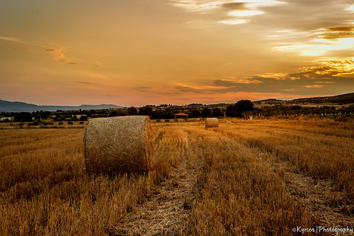"travel sunset summer sun nature europe superb straw natura greece macedonia bales macedonian rotoballe makedonia worldwidelandscapes"" ""nature'selegantshots"" thebestofmimamorsgroups besttravel flickrsportal onlythebestofflickr ilobsterit ""panoramafotografico"" ""flickr'sportal"" ""theoriginalgoldseal"" ""topshots"" ""napture'splus"" sunlobster"
