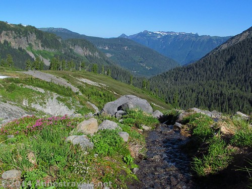 Mountain stream along the Ptarmigan Ridge Trail, Mount Baker-Snoqualmie National Forest, Washington