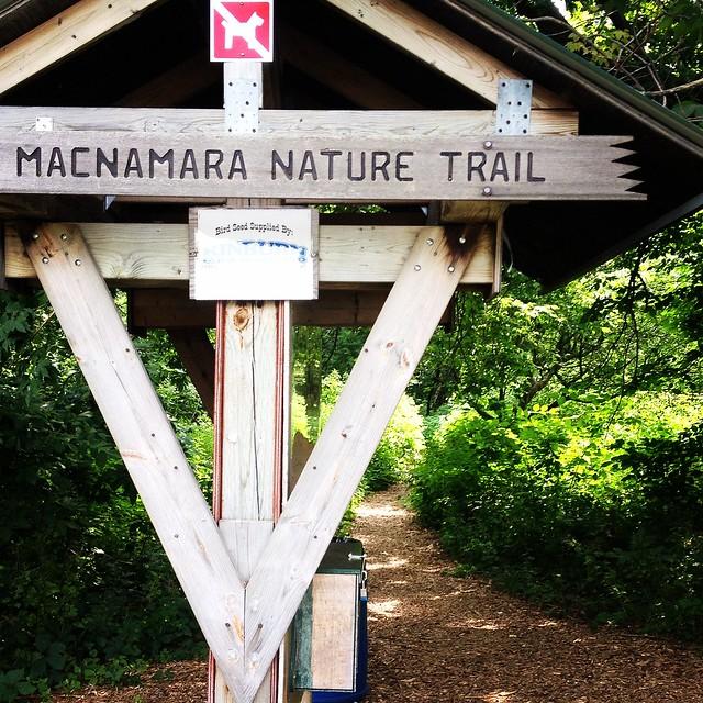 Macnamara Trail, Arnprior