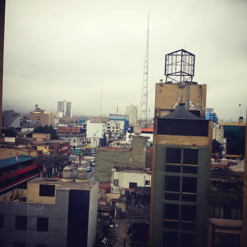 Lima, Lince