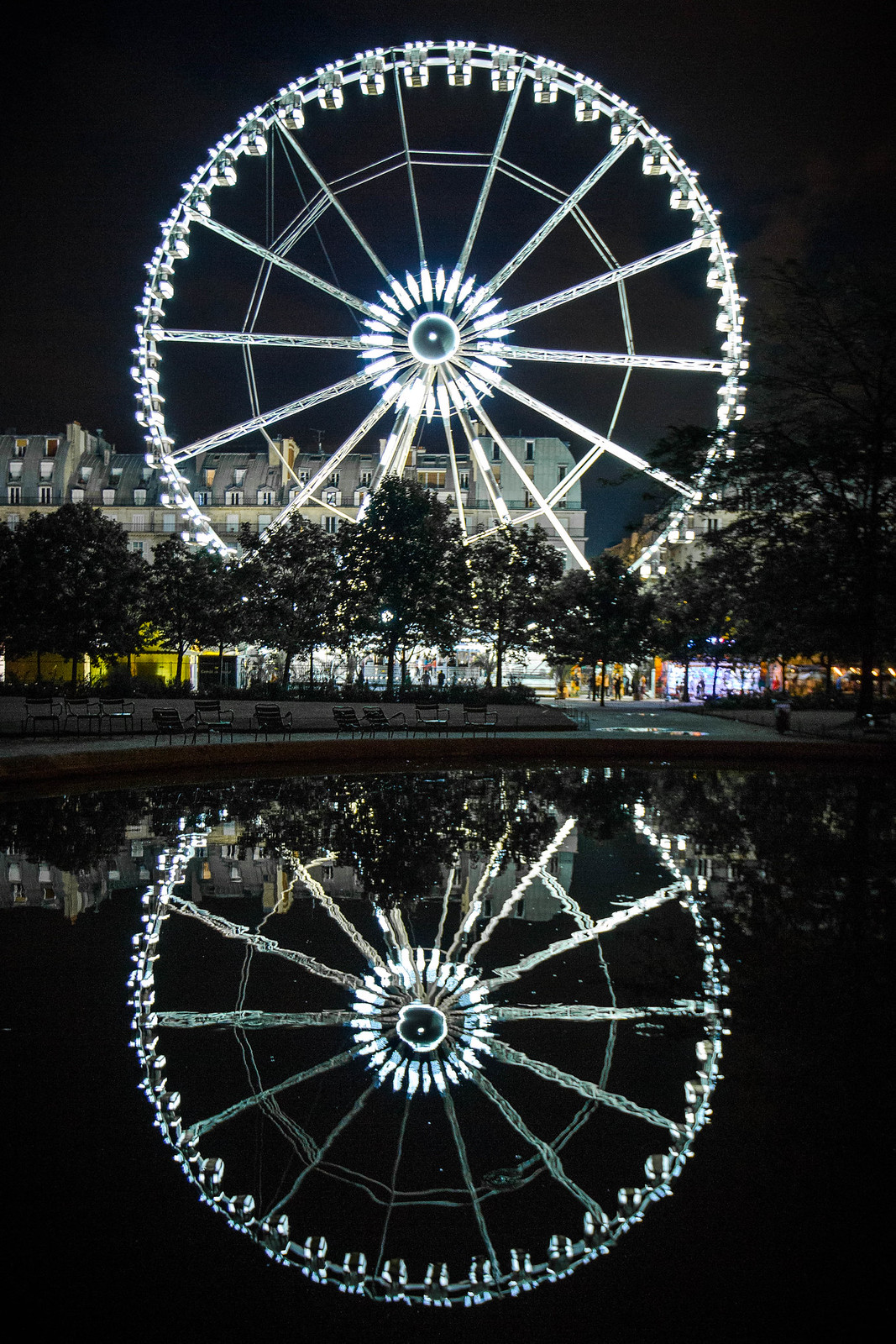 Tuileries Ferris Wheel, Night Reflection