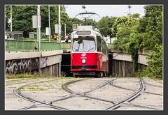 Tram Wien, 12.Aug 2014