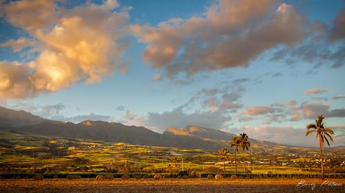 sunrise landscapes réunion coucherdesoleil canneàsucre canoneos5dii bemezpictures