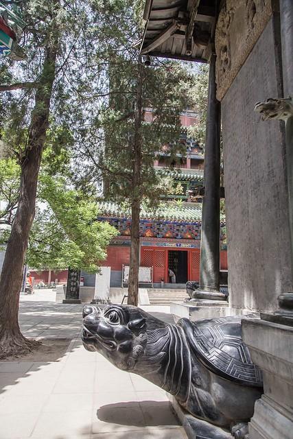 少林寺 (49)