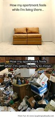 Best LOL Pictures,Funny Pics,Images, Memes|My Apartment!