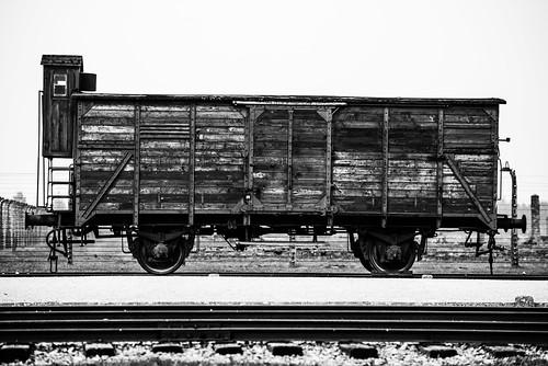 Auschwitz Birkenau Cattle Car