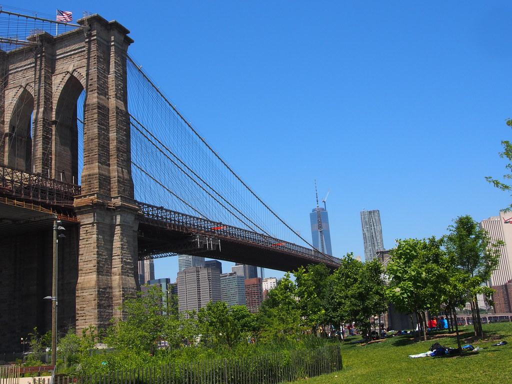 New York (578)