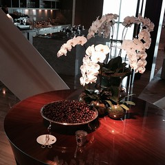 Welcome dates in the lobby of Hyatt Capital Gate #InAbuDhabi