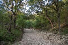 Leon Creek - O.P. Schnabel Park - San Antonio - Texas - 18 September 2017