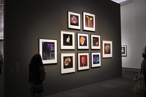 EXPOSITION ROBERT MAPPLETHORPE - GRAND PALAIS - PARIS - 2014