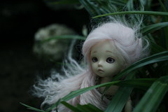 Naomi [Fairyland, Pukifee Luna]