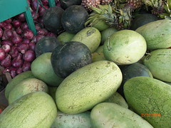Watermelon in koka area, East shoa zone