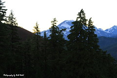 Mt. Bachelor at Sunset