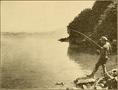 """Image from page 168 of """"The top of the continent; the story of a cheerful journey through our national parks"""" (1917)"""