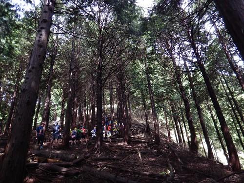 第16回 北丹沢12時間山岳耐久レース