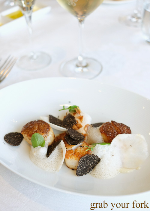 North Atlantic scallops with freshly shaved WA Manjimup truffle at Jonah's, Whale Beach
