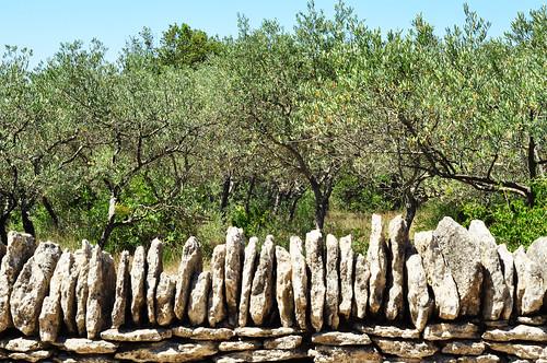 Borie Village des Borries Gordes Provence Luberon Kuppelbauten primitive Kragkuppel historisch Geschichte Architektur Stein Steine Steinbauten Museum Freilichtmuseum