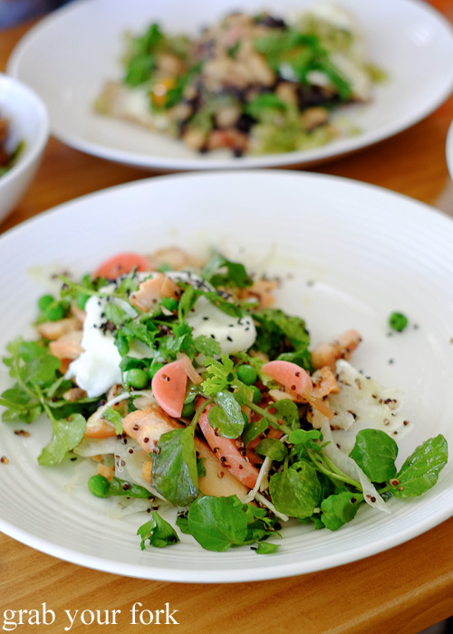 Hot smoked salmon with pickled radish at Brighton the Corner, Petersham