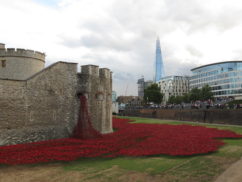Tower, Poppies, Shard