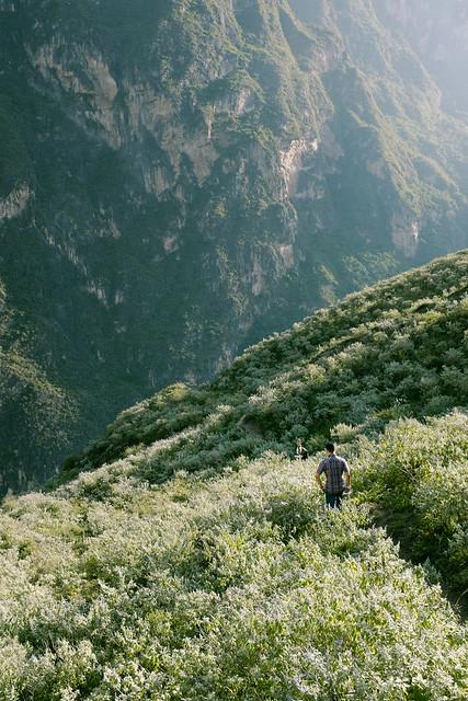 Into grassy hills