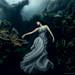 VonWong_Underwater_Tulamben-3 by Von Wong