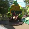 #TurtleWhirl #DutchWonderland