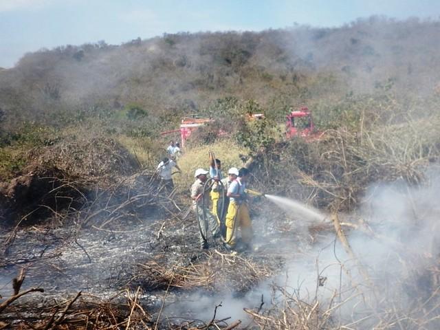 SGR lanza campaña contra Incendios Forestales en Manabí y Santo Domingo