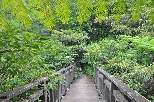 猴硐越嶺三貂嶺步道