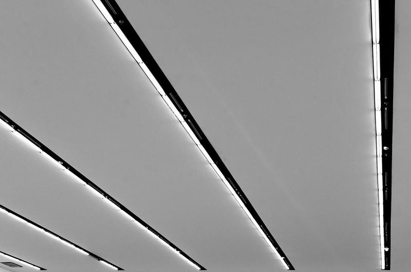 29/365: Parallel Lights