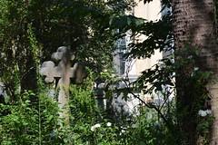 Charleston Churchyard